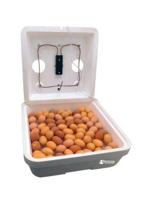 """Бытовой инкубатор """"Веселое семейство-2Т"""" (ручной, цифровой терморегулятор, ТЭНовый)"""